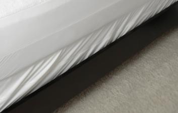 Bed Bug Mattress Encasements