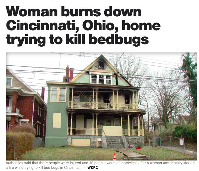 DIY Bed Bug Treatment Risks
