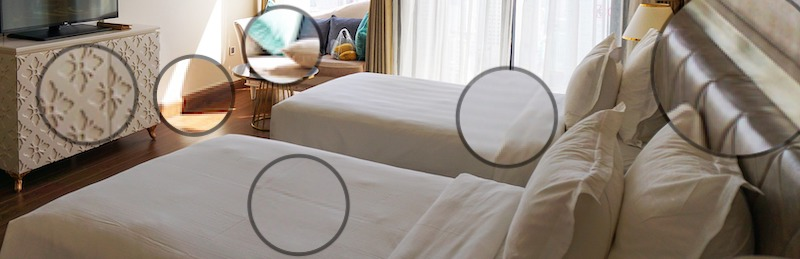 Whole House vs. Spot Treatment for Bed Bugs